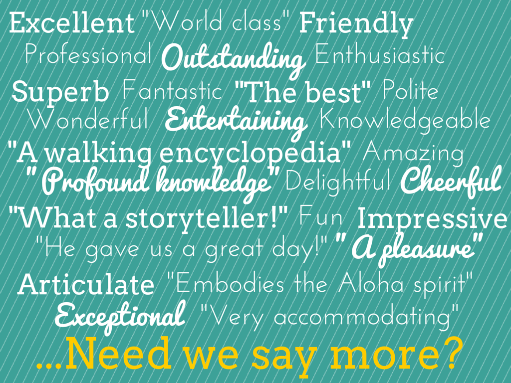 Word Cloud of Positive Adjectives Used to Describe the Tour Guides at Temptation Tours