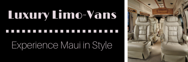 Luxury Limo-Van Tours in Maui